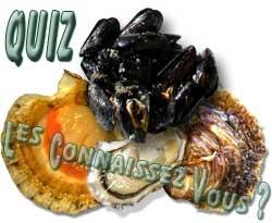 Quizz coquillage