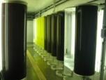 Culture de phytoplancton en salle au laboratoire Ifremer d'Argenton