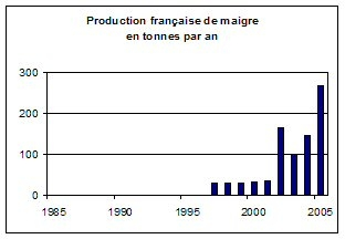 Production francaise de maigre